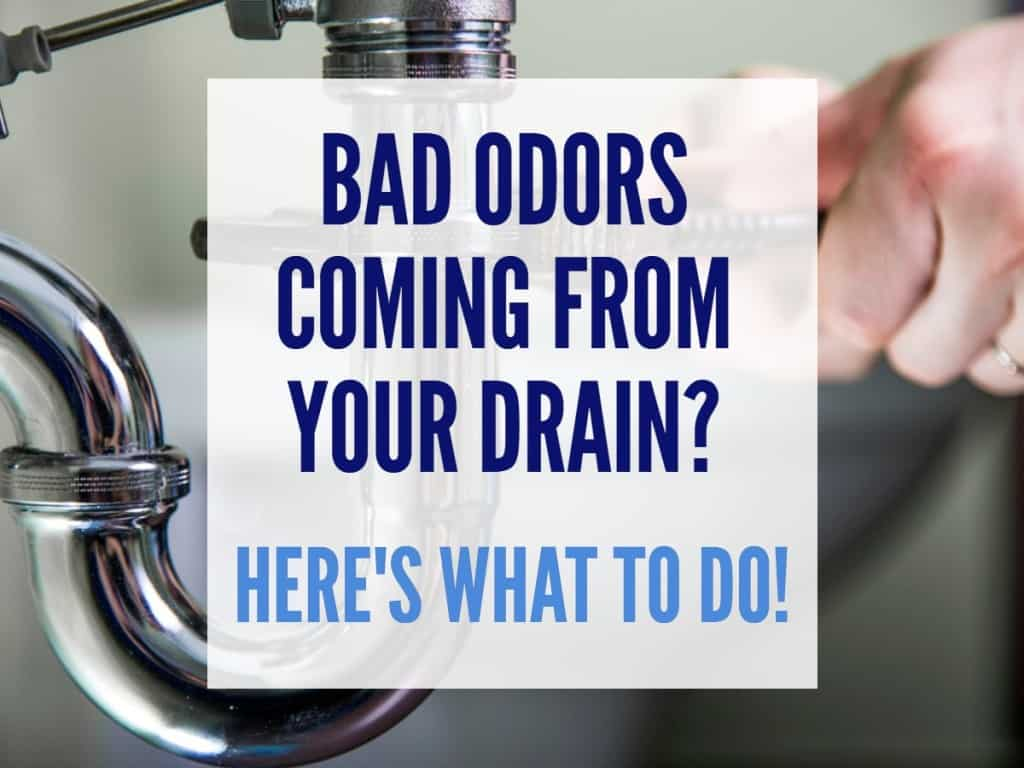 drain cleaning services brick nj